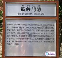Dsc05376